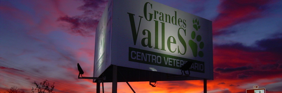 Como llegar Centro Veterinario Grandes Valles